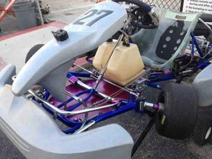 Racing Go Kart For Sale Rotax 125cc Engine And Kart Mini