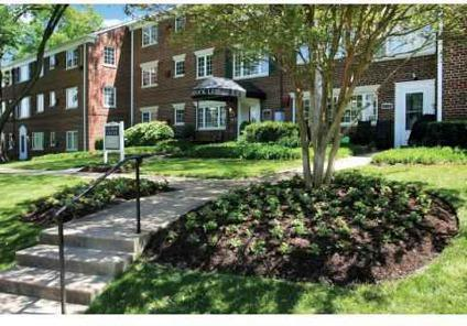 1 Bed Braddock Lee Apartments For Rent In Alexandria