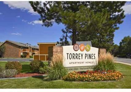 1 Bed Torrey Pines Apartments For Rent In Denver Colorado Classified