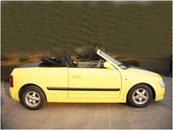 100 electric convertible brand new for sale in west palm for Palm beach electric motors