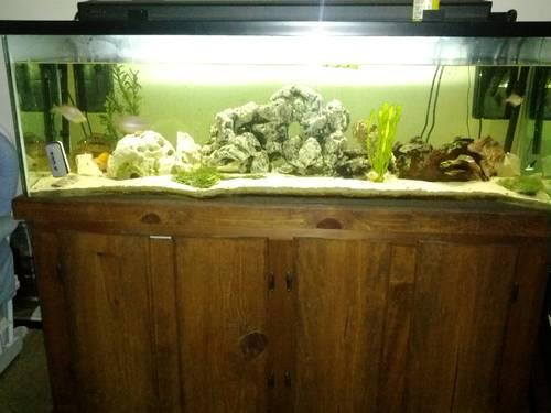 100 gallon aquarium fish tank with wood stand for sale in for Tall fish tanks for sale
