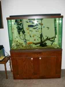 100 gallon fish tank and stand china spring for sale for 100 gallon fish tank stand