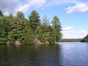 $10500 Soft Maple Flow Land Lease (Croghan, NY)
