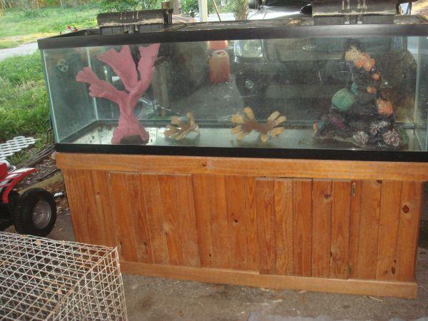 125 gallon Aquarium   Fish Tank   (Sarasota) for Sale in Sarasota, Florida Classified