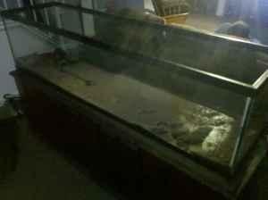 125 gallon fish tank holland for sale in toledo ohio for 300 gallon fish tank for sale