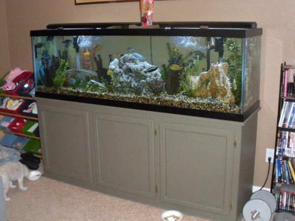 125 GALLON FISH TANK - (MODESTO ) for Sale in Modesto, California ...