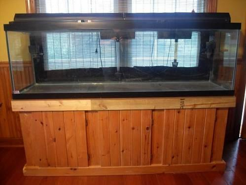 125 Gallon Fish Tank And Stand With Filters for Sale in Suffolk, Virginia Classified ...