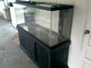 125 gallon predrilled fish tank w stand central for 125 gallon fish tank for sale