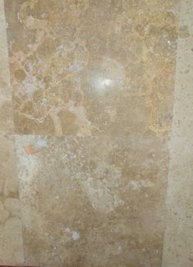 12x12 Noce Dalmatian Honed Travertine Tiles
