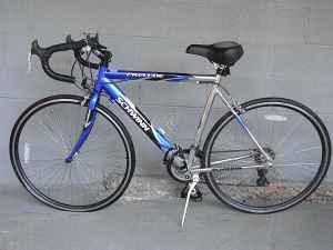 14 speed Schwinn Prelude Bike - $100 Alexander City