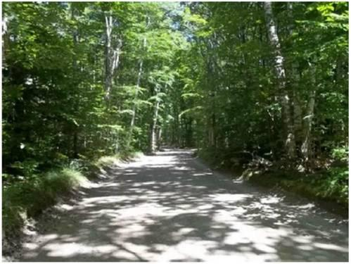 15+ Acres For Sale on Beaver Island! Seller Finances