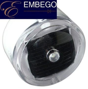 Solar Lights For Backyard Ice Rinks From Embego Llc For Sale In
