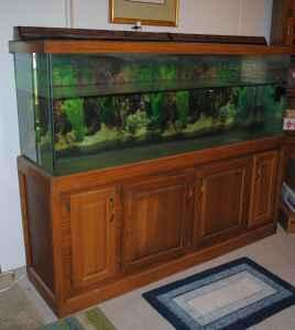 150 gallon fish tank south side btown for sale in