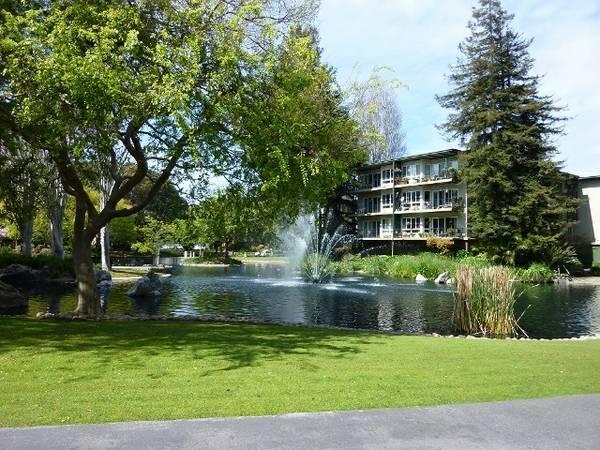 496ft 178 Resort Living Spacious Woodlake Studio For