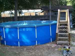 16 Quot X48 Quot Above Ground Swimming Pool Pensacola For Sale