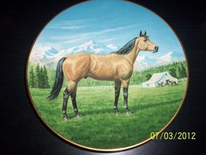 $19.99 Quarter Horse Plate