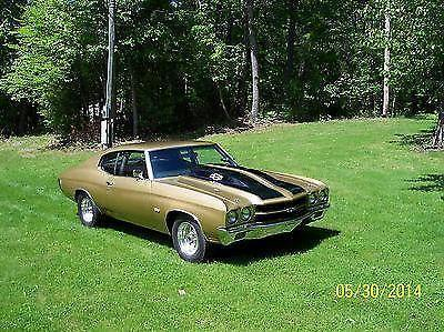 1970 chevy chevelle ss clone drag race show car for sale in ashbury pennsylvania classified. Black Bedroom Furniture Sets. Home Design Ideas