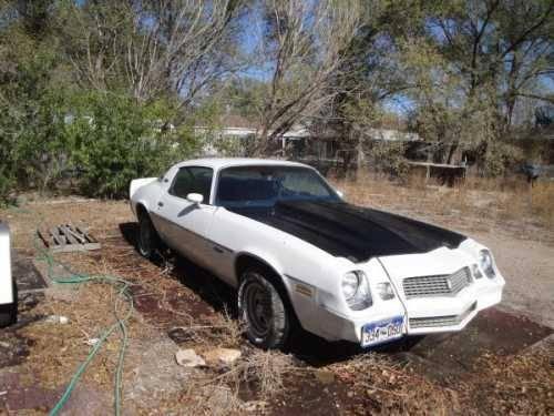 1980 Chevrolet Camaro High Performance in Pueblo, CO