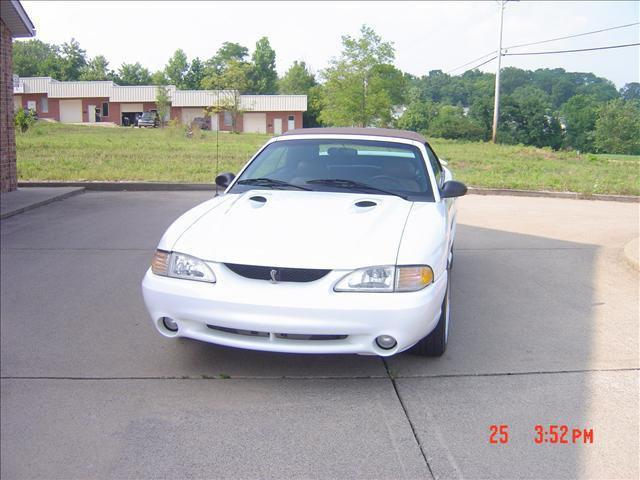 1996 ford mustang svt cobra for sale in mount juliet. Black Bedroom Furniture Sets. Home Design Ideas