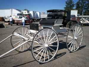 2 person horsedrawn buggy - $1500 (courtland/sac delta)