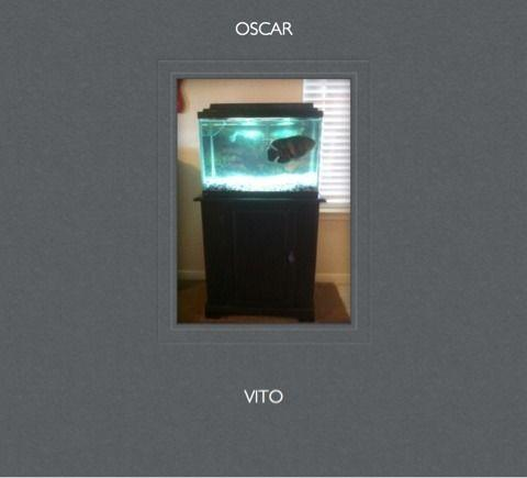 20 gallon fish tank stand killeen texas for sale in for 100 gallon fish tank with stand