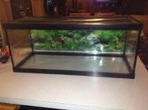 20 gallon long fish tank with screen top - $25 (Greece