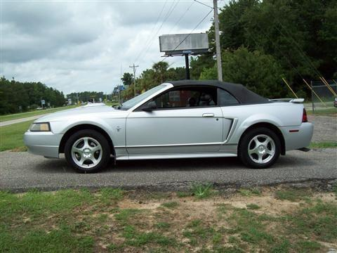 2003 ford mustang convertible premium convertible 2d for sale in longs south carolina. Black Bedroom Furniture Sets. Home Design Ideas