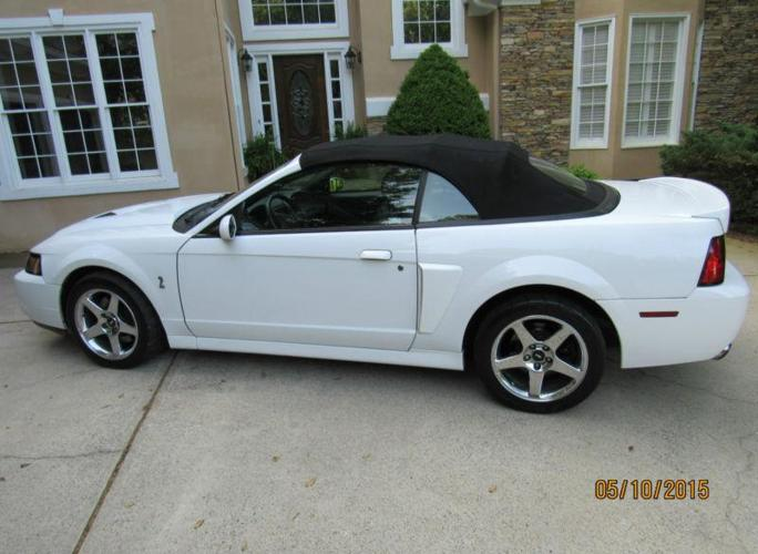 2004 ford mustang svt cobra for sale in camilla georgia classified. Black Bedroom Furniture Sets. Home Design Ideas