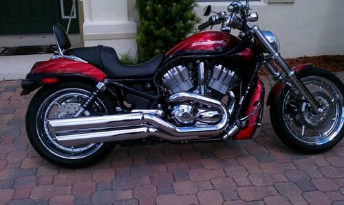 Adamec Harley Davidson Baymeadows >> 2004 Harley Davidson V-Rod for Sale in Clermont, Florida Classified   AmericanListed.com