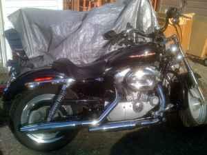 2004 Harley Sportster 883 - $5600 Wasilla