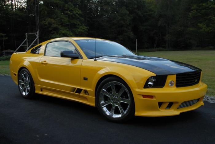 2005 ford mustang saleen for sale in glenshaw pennsylvania classified. Black Bedroom Furniture Sets. Home Design Ideas