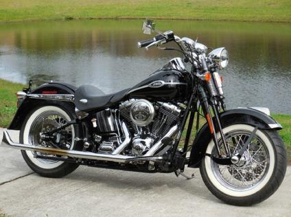 Harley Davidson Flstsc Softail Springer Classic Paint