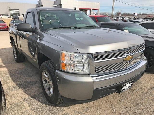 2008 Chevrolet Silverado 1500 Work Truck 2WD Work Truck
