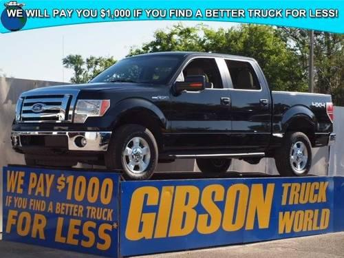 2010 ford f 150 xlt crew cab for sale in sanford florida classified. Black Bedroom Furniture Sets. Home Design Ideas