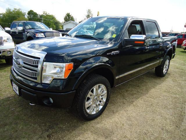 2010 Ford F150 Platinum For Sale In Baxley Georgia