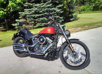 2011 Harley Davidson FLSTN Softail in Kewaskum, WI