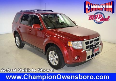 2012 ford escape limited owensboro ky for sale in owensboro kentucky classified. Black Bedroom Furniture Sets. Home Design Ideas