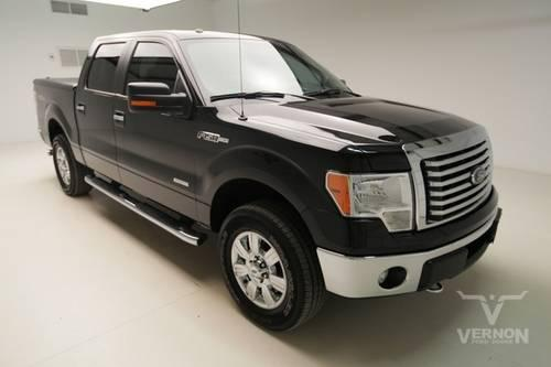 2012 ford f 150 pickup truck xlt texas edition crew cab. Black Bedroom Furniture Sets. Home Design Ideas