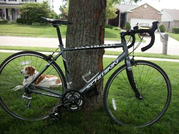 2012 Schwinn Fastback Sport Road Bike - $375