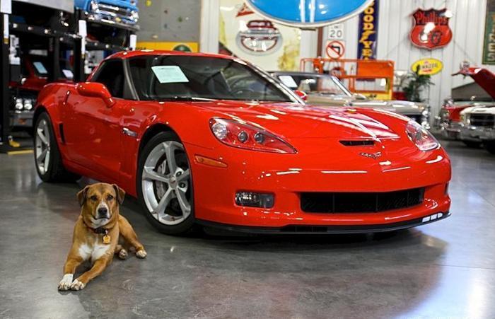2013 chevrolet corvette grand sport for sale in fenton missouri classified. Black Bedroom Furniture Sets. Home Design Ideas