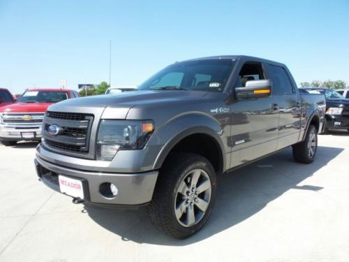 2014 ford f 150 platinum fort worth tx for sale in fort worth texas classified. Black Bedroom Furniture Sets. Home Design Ideas