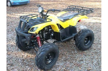 2014 TAO TAO ATV-150D