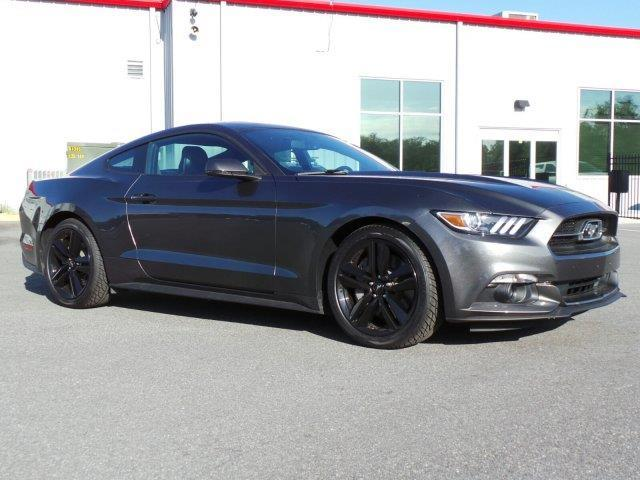 2015 ford mustang ecoboost ecoboost 2dr fastback for sale in ocala florida classified. Black Bedroom Furniture Sets. Home Design Ideas