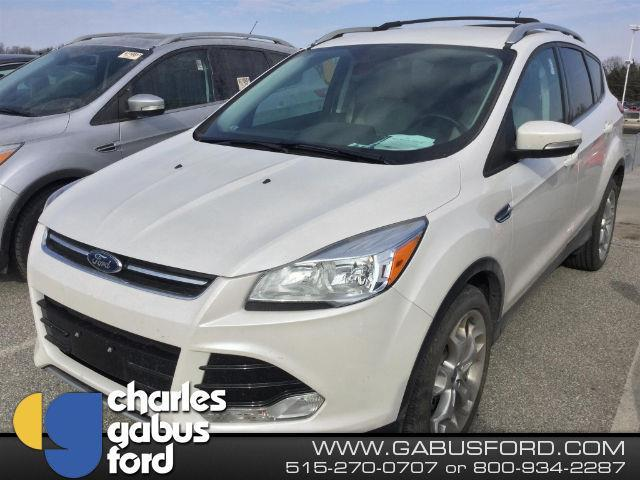 2016 ford escape titanium awd titanium 4dr suv for sale in des moines iowa classified. Black Bedroom Furniture Sets. Home Design Ideas
