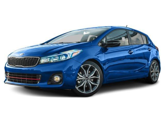 2017 kia forte5 lx lx 4dr hatchback for sale in canandaigua new york classified. Black Bedroom Furniture Sets. Home Design Ideas
