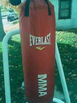 $210 EVERLAST punching bag and CENTURY STAND  speedbag EVERLAST gloves Frankfort