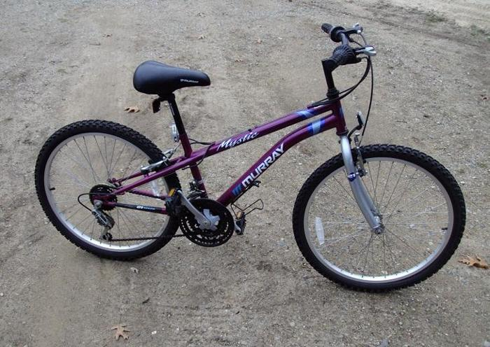 Bikes For Sale In Holland Mi inch girls mountain bike