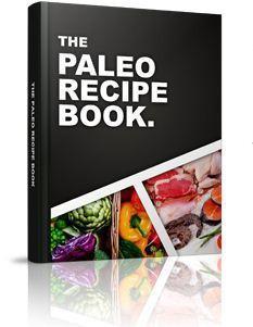 Paleo diet recipe book free download