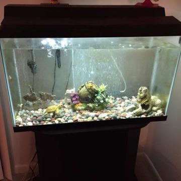 28 gallon Fish Tank for sale