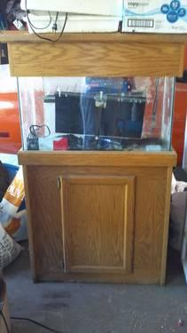 29 gallon aquarium with stand and canopy